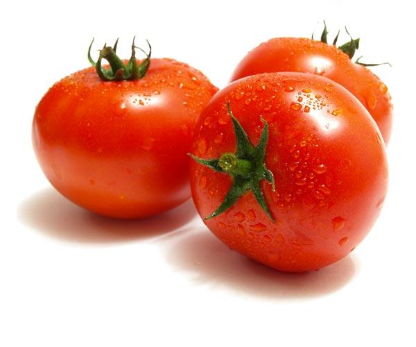 pomodori CSC Lazio