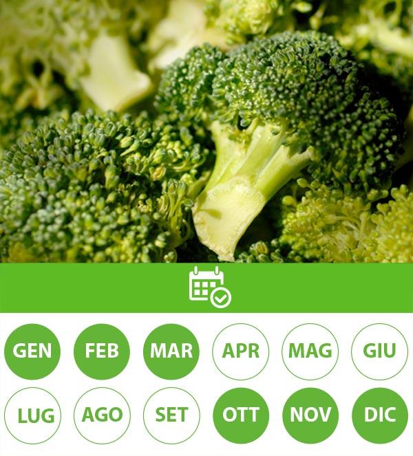 stagionalita broccolo