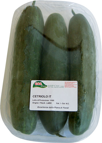 cetriolo-2